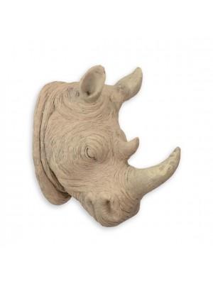 Hlava bieleho nosorožca